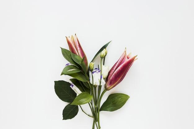 Bouquet minimalista de elegantes lírios reais