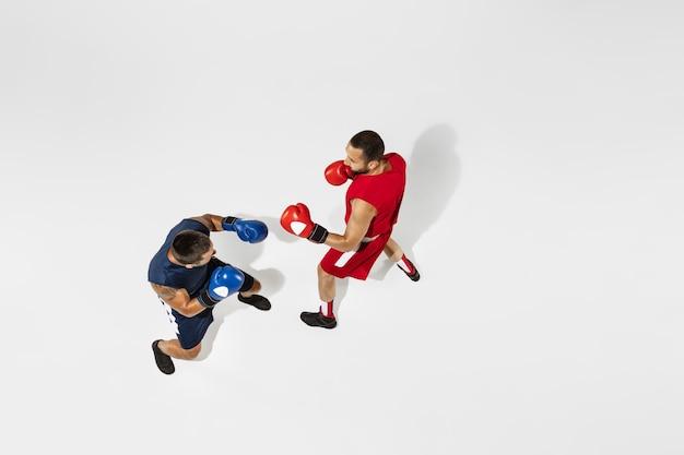 Boxe de dois boxeadores profissionais isolado no fundo branco do estúdio, ação, vista superior. alguns atletas caucasianos musculosos em forma lutando. conceito de esporte, competição, emoção e emoções humanas. Foto Premium