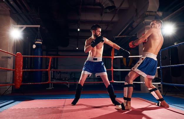 Boxeadores treinando kickboxing no ringue na academia