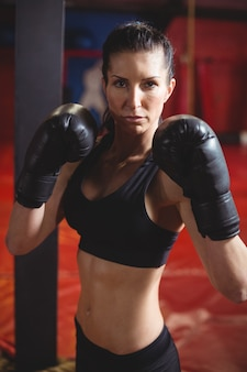 Boxer fêmea confiante, realizando postura de boxe