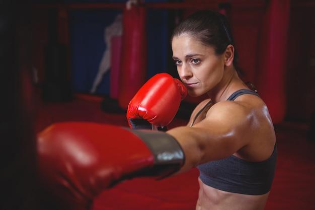Boxer fêmea perfurando um saco de boxe