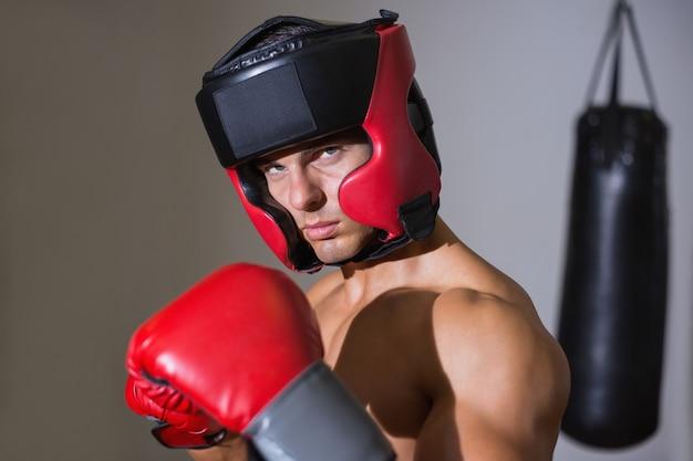 Boxer macho em posição defensiva