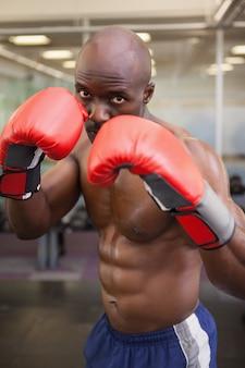 Boxer muscular em posição defensiva
