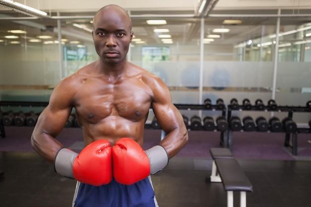 Boxer muscular no health club