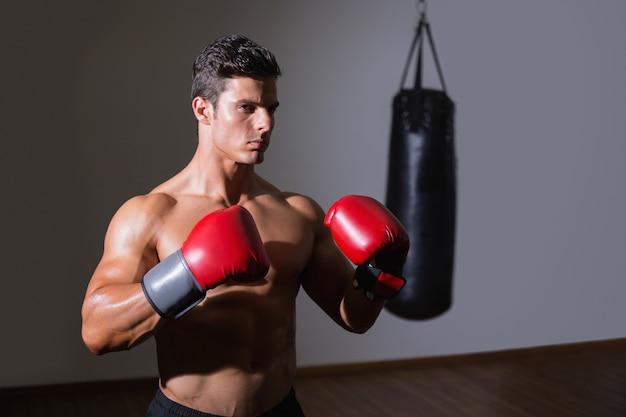 Boxer muscular sem camisa em posição defensiva no health club