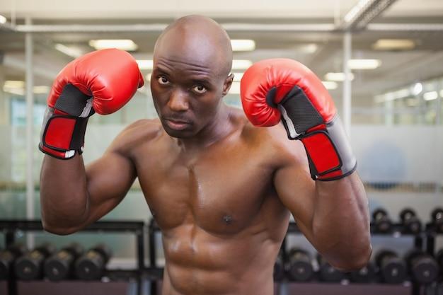 Boxer muscular sem camisa no health club