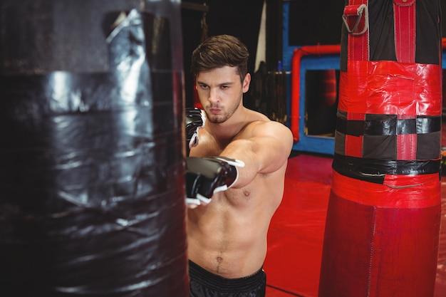 Boxer, perfurando um saco de boxe