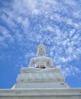 Branca, buddha, estátua, azul, céu