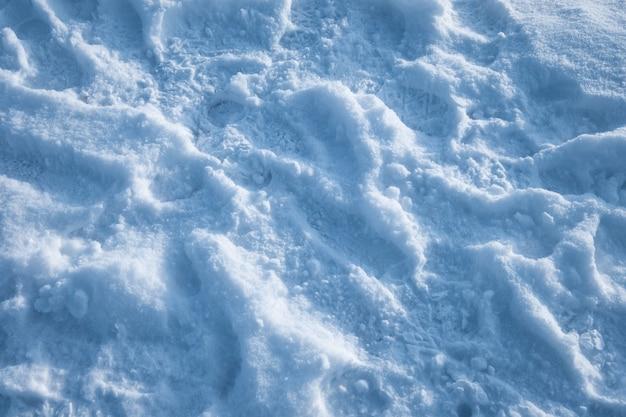 Branca de neve com luz solar coberta no inverno