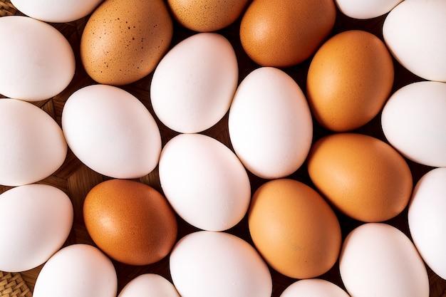 Branco e marrom ovo padrão plana leigos.