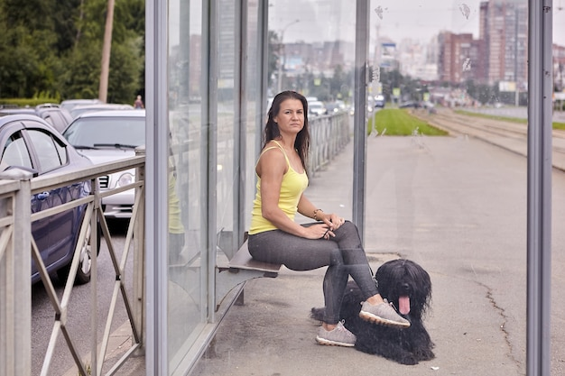 Briard preto de cabelos compridos e proprietária estão sentados na parada do bonde enquanto esperam o transporte público.