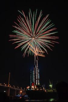 Brilhando flores desabrochando estourando fogos de artifício iluminar no céu negro