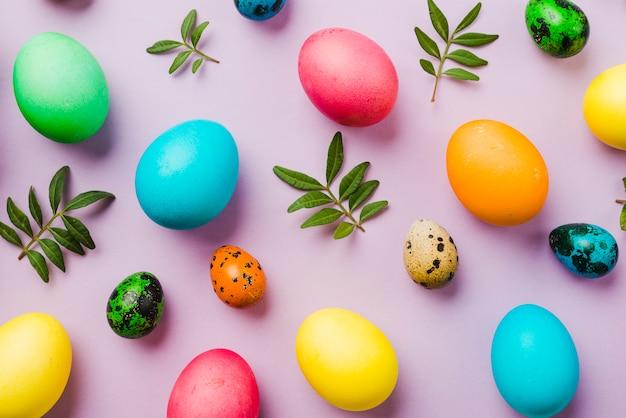 Brilhante coleção de ovos coloridos perto de folhas