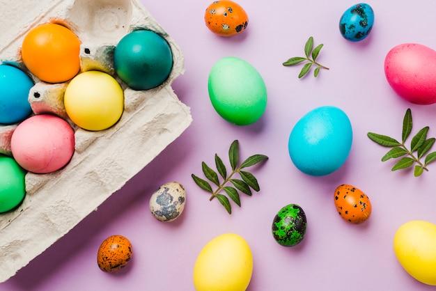Brilhante coleção de ovos coloridos perto de recipiente e folhas