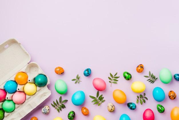 Brilhante conjunto de ovos coloridos perto de recipiente e folhas