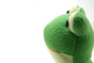Brinquedo macio verde, cor