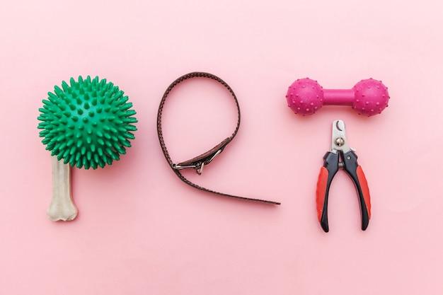 Brinquedos e acessórios para cachorro brincando e treinando isolados na moda pastel rosa