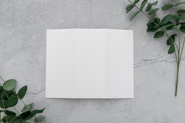 Brochura com três dobras com folhas