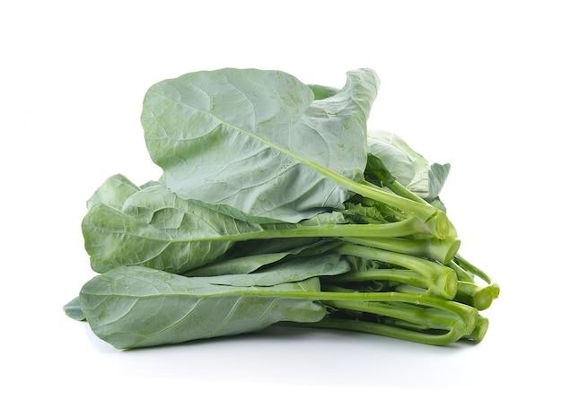Brócolis chinês