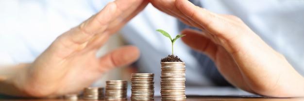 Broto verde crescendo por terra em moedas, mãos masculinas fechando pilhas de moedas em ordem crescente