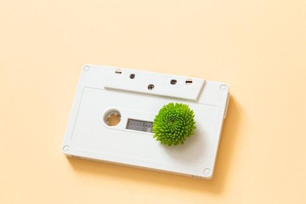 Broto verde em fita cassete compacta