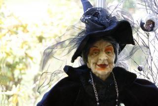 Bruxa velha