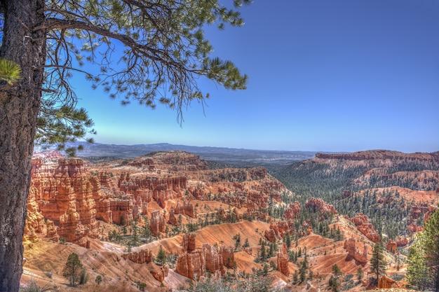 Bryce canyon national park sob a luz do sol e um céu azul em utah