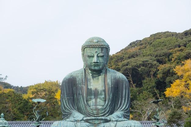 Buda no parque