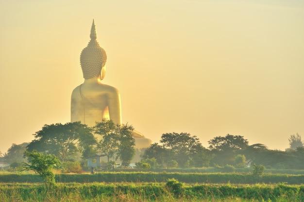 Budha dourado tailândia