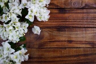 Buganvília em fundo de madeira