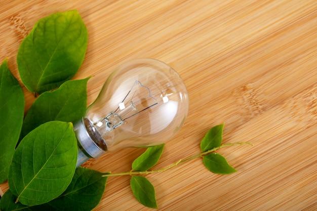 Bulbo com folha verde sobre fundo de madeira