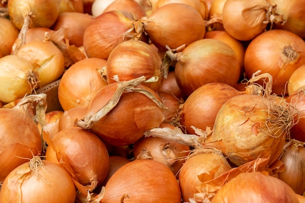 Bulbos de cebola amarela no mercado dos fazendeiros. comida