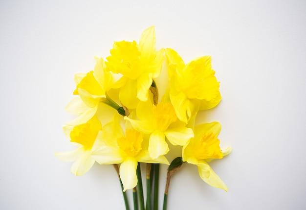 Buquê amarelo de narcisos deitado na mesa branca