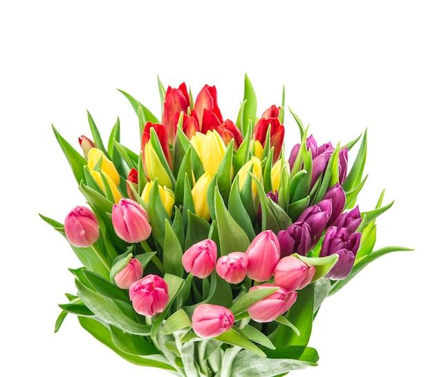 Buquê colorido de flores de tulipa em fundo branco