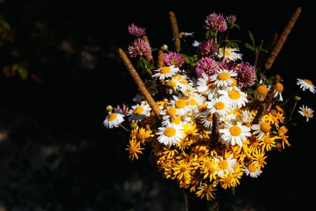 Buquê de campo com margaridas, trevo, pequenas flores amarelas e várias gramíneas em um fundo preto