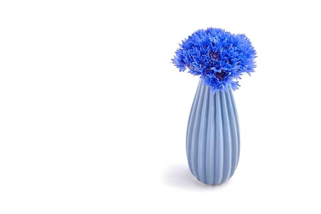 Buquê de flores azuis frescas em um vaso de cerâmica azul isolado no fundo branco, cópia spce