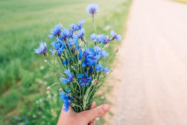 Buquê de flores azuis no fundo do campo de verão. flores do campo de ervas. símbolo da bielo-rússia
