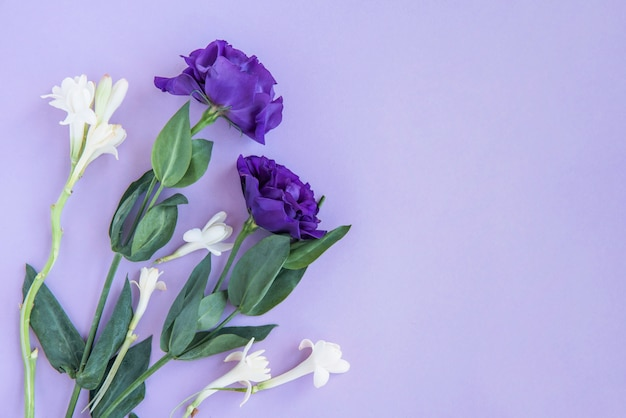 Buquê de flores brancas e azuis
