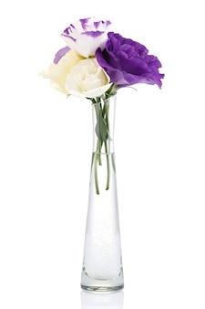 Buquê de flores coloridas eustoma em um vaso de vidro isolado no fundo branco.