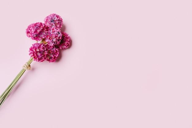 Buquê de flores cor de rosa em fundo rosa, copie o espaço.