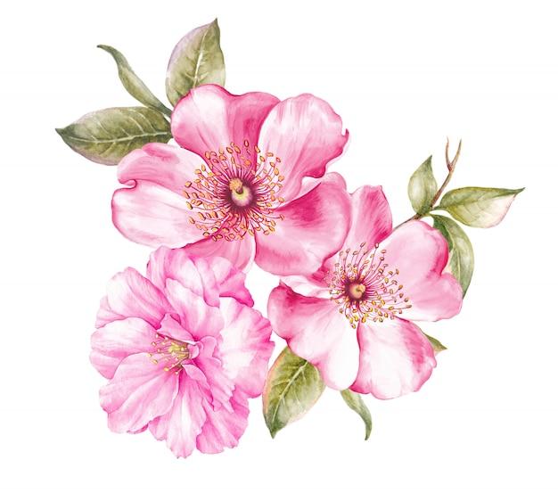 Buquê de flores de cerejeira.