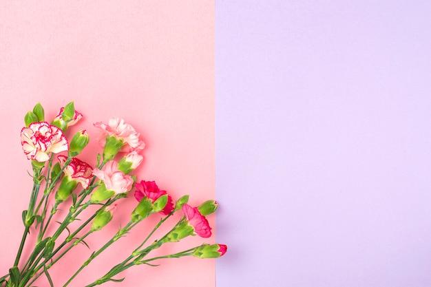 Buquê de flores de cravo rosa diferentes em fundo colorido duplo