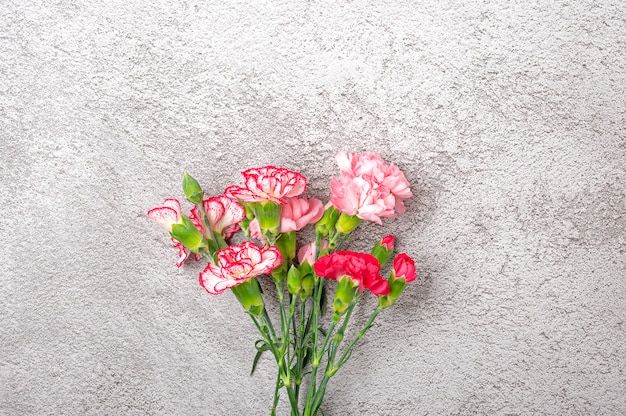Buquê de flores de cravo rosa em fundo cinza de concreto