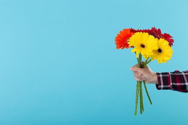 Buquê de flores de gérbera sobre a superfície azul com espaço de cópia