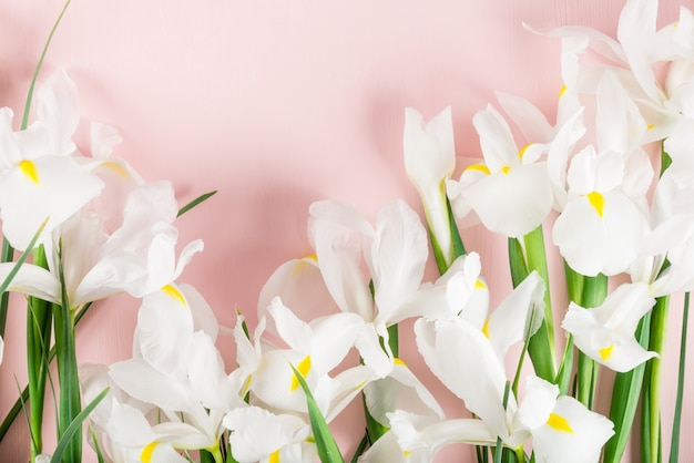 Buquê de flores de íris linda