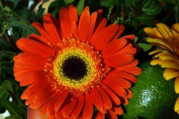 Buquê de flores e frutas frescas