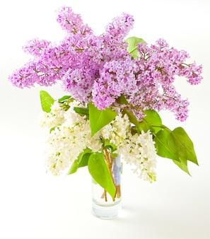 Buquê de flores lilás brancas e roxas em um vaso de vidro com fundo branco