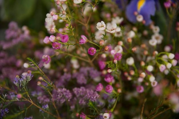 Buquê de flores minúsculas roxo e branco