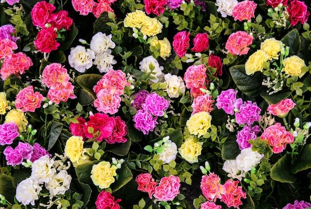 Buquê de flores mistas para plano de fundo