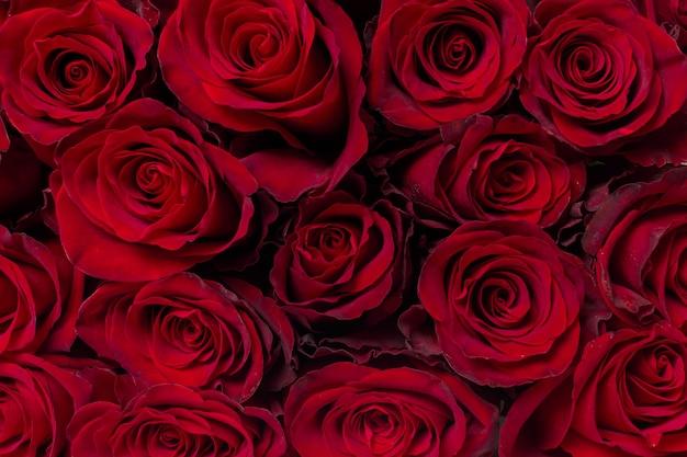 Buquê de flores: rosas vermelhas frescas